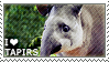 I love Tapirs