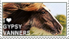 I love Gypsy Vanners by WishmasterAlchemist