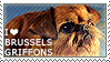 I love Brussels Griffons by WishmasterAlchemist