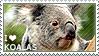 I love Koalas by WishmasterAlchemist