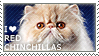I love Red Chinchillas by WishmasterAlchemist