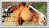 I love Mixed-breed Horses by WishmasterAlchemist