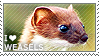 I love Weasels