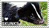 I love Skunks by WishmasterAlchemist
