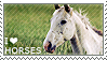 I love Horses by WishmasterAlchemist