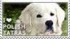 I love Polish Tatra Sheepdogs by WishmasterAlchemist