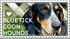 I love Bluetick Coonhounds