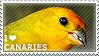 I love Canaries by WishmasterAlchemist