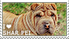 I love Shar Pei by WishmasterAlchemist