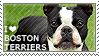 I love Boston Terriers by WishmasterAlchemist