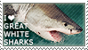 I love Great White Sharks by WishmasterAlchemist
