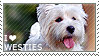 I love West Highland White Terriers by WishmasterAlchemist