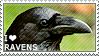 I love Ravens by WishmasterAlchemist