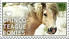 I love Chincoteague Ponies by WishmasterAlchemist