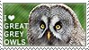 I love Great Grey Owls by WishmasterAlchemist
