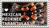 I love Mexican Redknee Tarantulas by WishmasterAlchemist