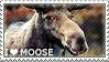 I love Moose by WishmasterAlchemist