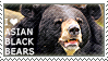 I love Asian Black Bears by WishmasterAlchemist