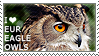 I love Eurasian Eagle-Owls