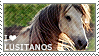 http://fc07.deviantart.net/fs71/f/2011/283/d/5/i_love_lusitanos_by_wishmasteralchemist-d4ceok8.png
