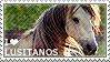 I love Lusitanos by WishmasterAlchemist