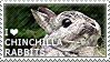 I love Chinchilla Rabbits
