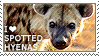 I love Spotted Hyenas