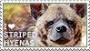I love Striped Hyenas by WishmasterAlchemist