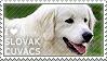 I love Slovak Cuvacs by WishmasterAlchemist