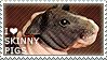 I love Skinny Pigs by WishmasterAlchemist