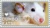 I love Dumbo Rats by WishmasterAlchemist