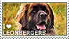 I love Leonbergers by WishmasterAlchemist