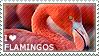 I love Flamingos by WishmasterAlchemist