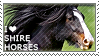 I love Shire Horses