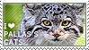 I love Pallas's Cats by WishmasterAlchemist