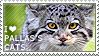 I love Pallas's Cats by WishmasterAlchemist