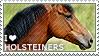 I love Holsteiners by WishmasterAlchemist