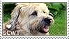 I love Soft-coated Wheaten Terriers by WishmasterAlchemist
