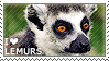 I love Lemurs by WishmasterAlchemist