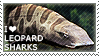 I love Leopard Sharks by WishmasterAlchemist