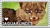 I love Jaguarundis by WishmasterAlchemist