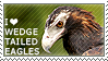 I love Wedge-tailed Eagles by WishmasterAlchemist