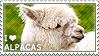 I love Alpacas by WishmasterAlchemist
