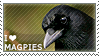 I love Magpies