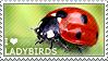 I love Ladybirds