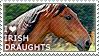 I love Irish Draughts by WishmasterAlchemist