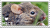 I love Mice by WishmasterAlchemist