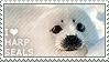 I love Harp Seals by WishmasterAlchemist