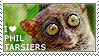 I love Philippine Tarsiers by WishmasterAlchemist