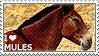 I love Mules